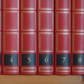 Az ideális brief hét eleme