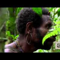Új-Guinea + Fülöp-szigetek