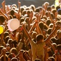 What a feelin' - Festivals in Hungary