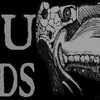 JuJu Hands - Heavy desert punk rock from Beograd!