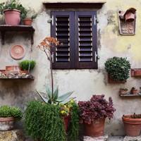 Készülj már most a tavaszi kertészkedésre! – Mit és honnan érdemes beszerezni?