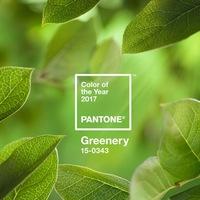 A Pantone szerint az Év színe 2017-ben