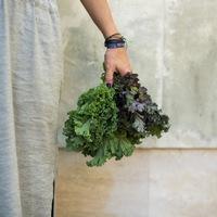 Zöldeket beszélek - Bezzegh Éva salátáskönyve
