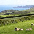Cornwall mesés tájain
