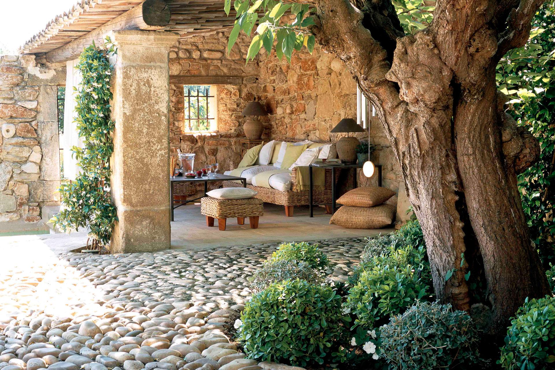 Provence-i varázs