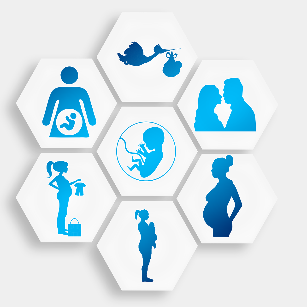 pregnancy-1749858_1280.png