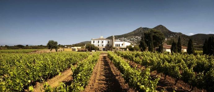winery-roses-spain.jpg
