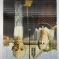 Egy tekercs cérna = egy pixel