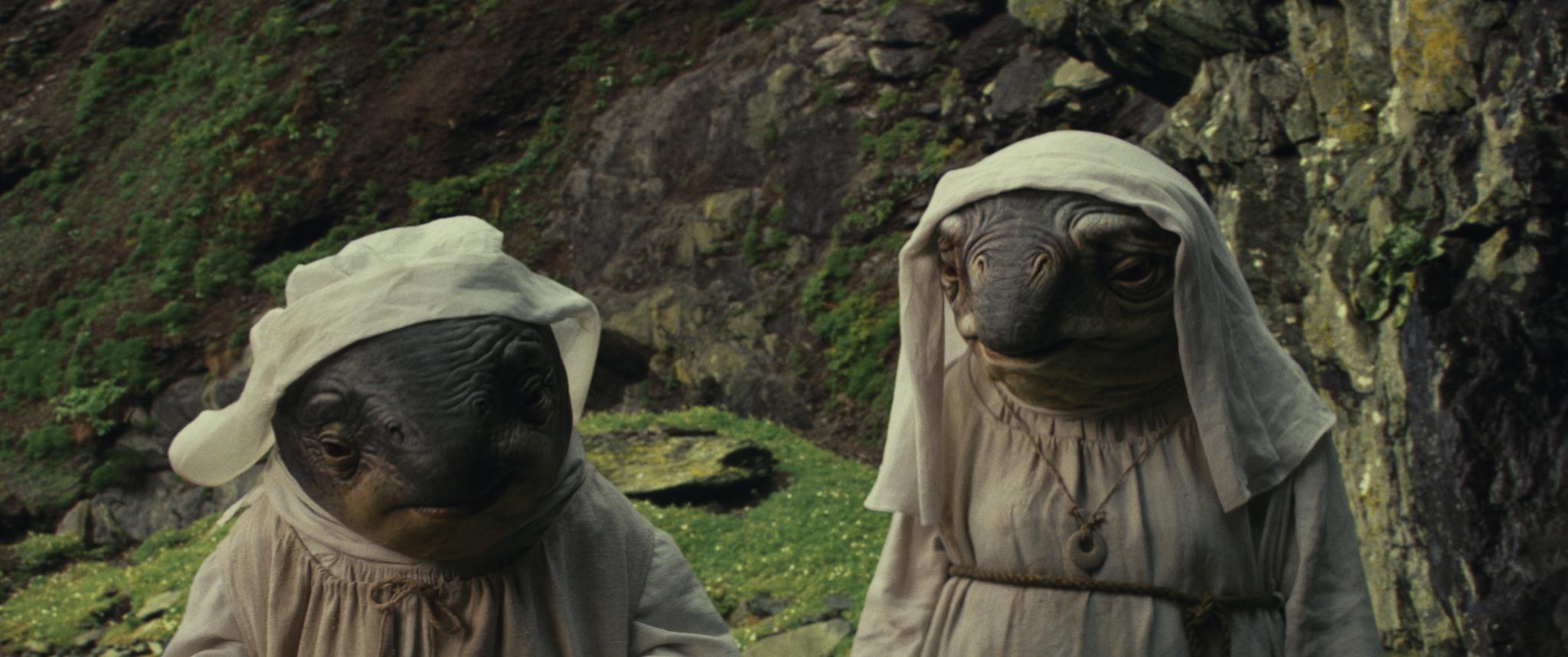 Az Ahch-To lakói ezek a kétéltű lények is, akik évezredeken át gondját viselték az ősi templomnak, de nincsenek elragadtatva Luke jelenlététől.<br /><br />Remélem, nem állnak össze kórussá... :)