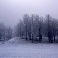 Téli tarisznya- téli versek óvodásoknak és szüleiknek