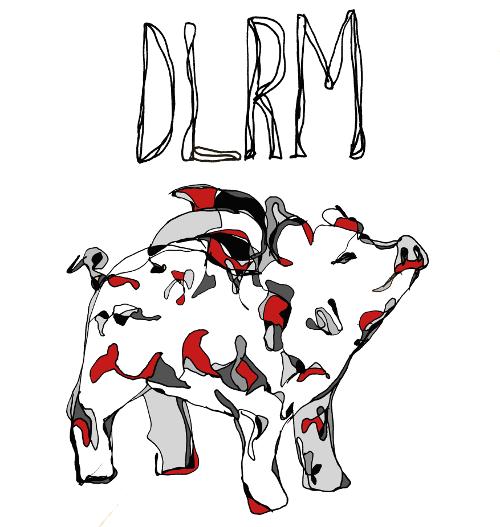 DLRM pályázat