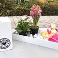 Tavaszi mini virágos dísz - DIY