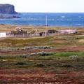 Sárkányok a Medúza-öbölben