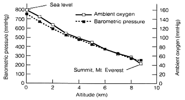 everest_oxygen_graph.jpg