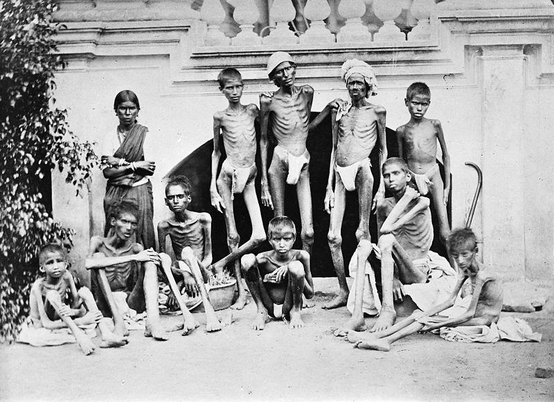 famine_1876-78_bangalore_wellcome_m0014873.jpg