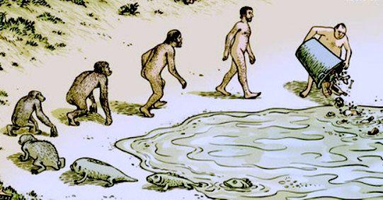 plastic-evolution-fish-apes-man-garbage-full-cycle.jpeg