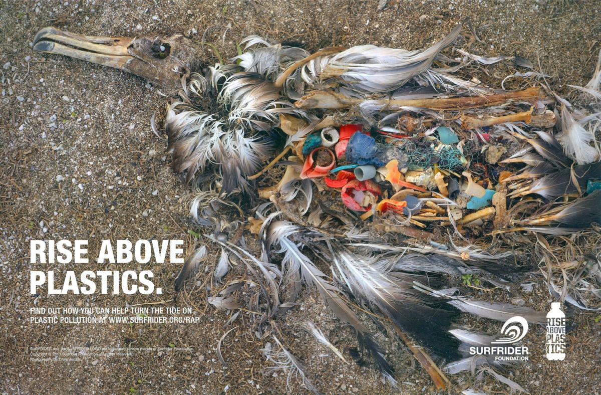 rise-above-plastics-1200.jpg