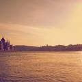 Matusik Tamás - Budapest