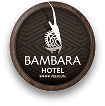 bambara-logo.png