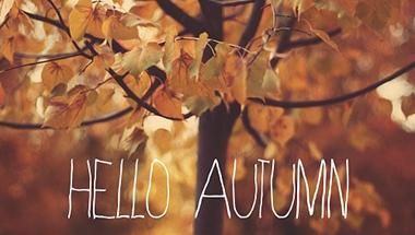 Itt van az ősz, itt van újra #1   Beauty haul & Soul  