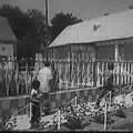 Dokumentumfilm: Az első cigányfalu - Alsószentmárton (1981)
