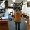 A hatalmas élethű macskafej tényleg klassz, és ha szembe jön veled biztos betojsz!