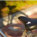 Megint ellopták a bringádat? Legközelebb tegyél a nyergére egy madárszar matricát!