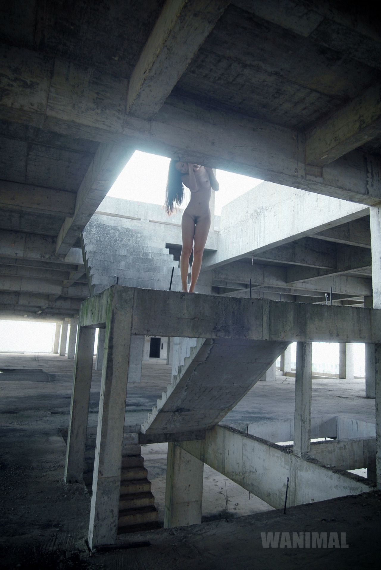 wanimal-cement.jpg
