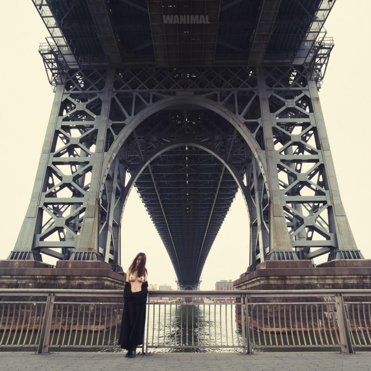 wanimal-new_york.jpg