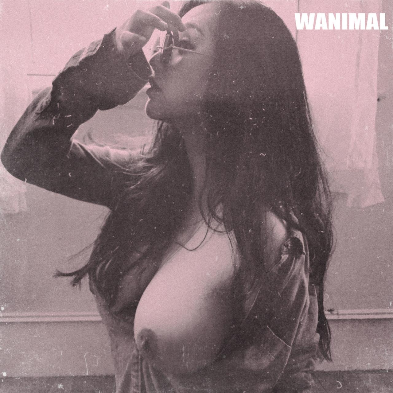 wanimal-retro.jpg