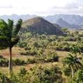 Kocsibérlési procedúra, Las Terrasas, Vinales völgy