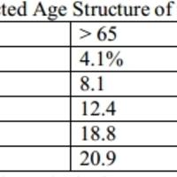 Hogyan hatástalanítható a nyugdíjbomba?
