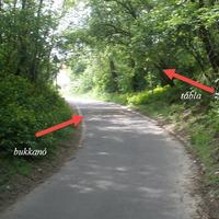 Vigyázni a kerékpárúton Vác és Verőce közt!