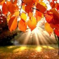 Az őszi szünet első napján…