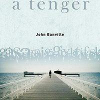 John Banville - A tenger (2005)