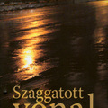 Egressy Zoltán - Szaggatott vonal : aparegény (2011)