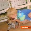 Doki Potter: Sexuális felvilágosítás állatorvos családban - Velem történt...