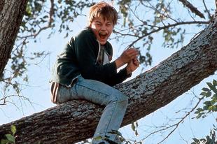 DiCaprio és az Oscar
