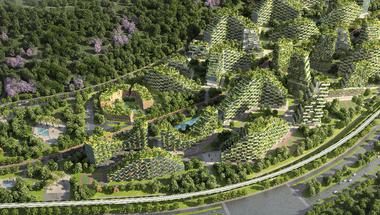 Erdei Város Kínában