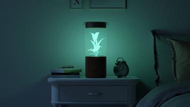 Avatar lámpa?