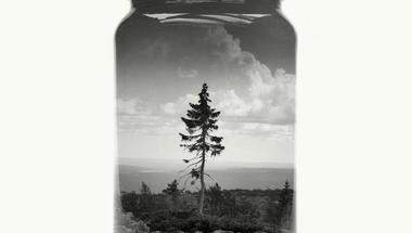 Üvegbe zárt finn tájak
