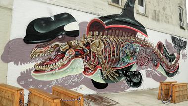 Anatómia Street art