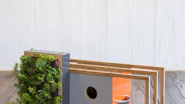 Építészet inspirálta madárodúk