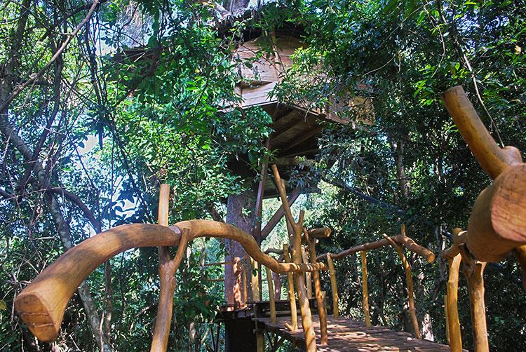 treehotel-in-sri-lanka-travellers-hideout-in-miyanawatta-_-anusha-rajaguru-030.jpg
