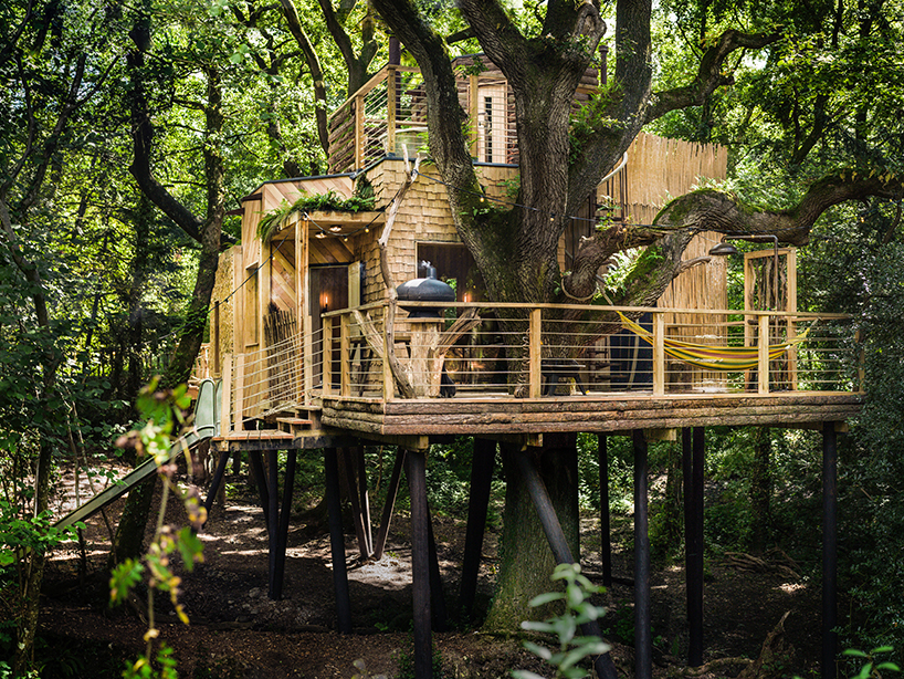 woodman-treehouse-west-dorset-england-guy-mallinson-brownlie-ernst-and-marks-designboom-016.jpg