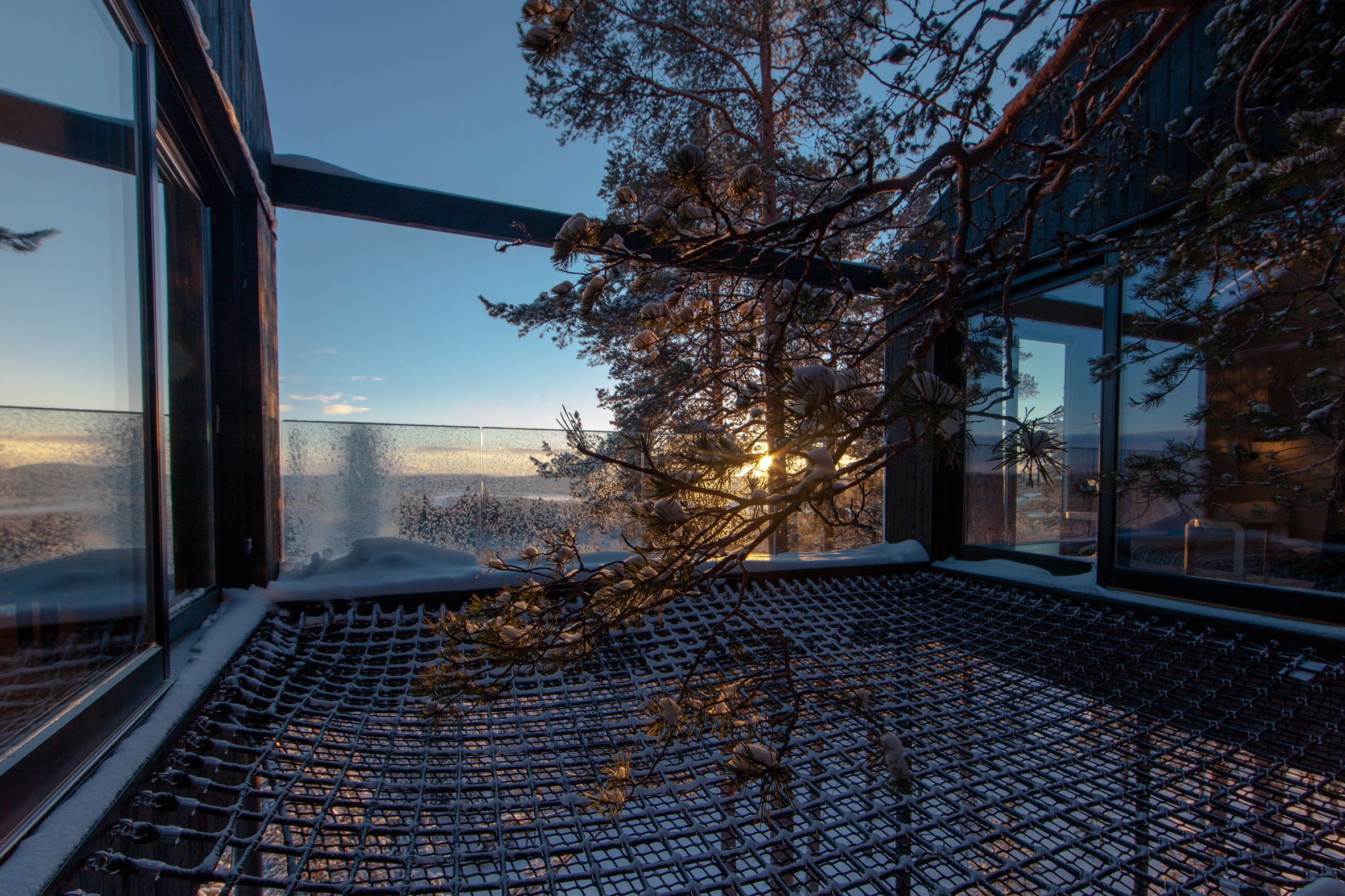 the-7th-room-tree-hotel-snohetta-sweden-architecture_dezeen_2364_col_10.jpg