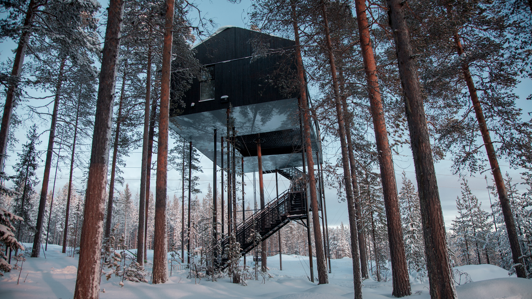 the-7th-room-tree-hotel-snohetta-sweden-architecture_dezeen_hero.jpg