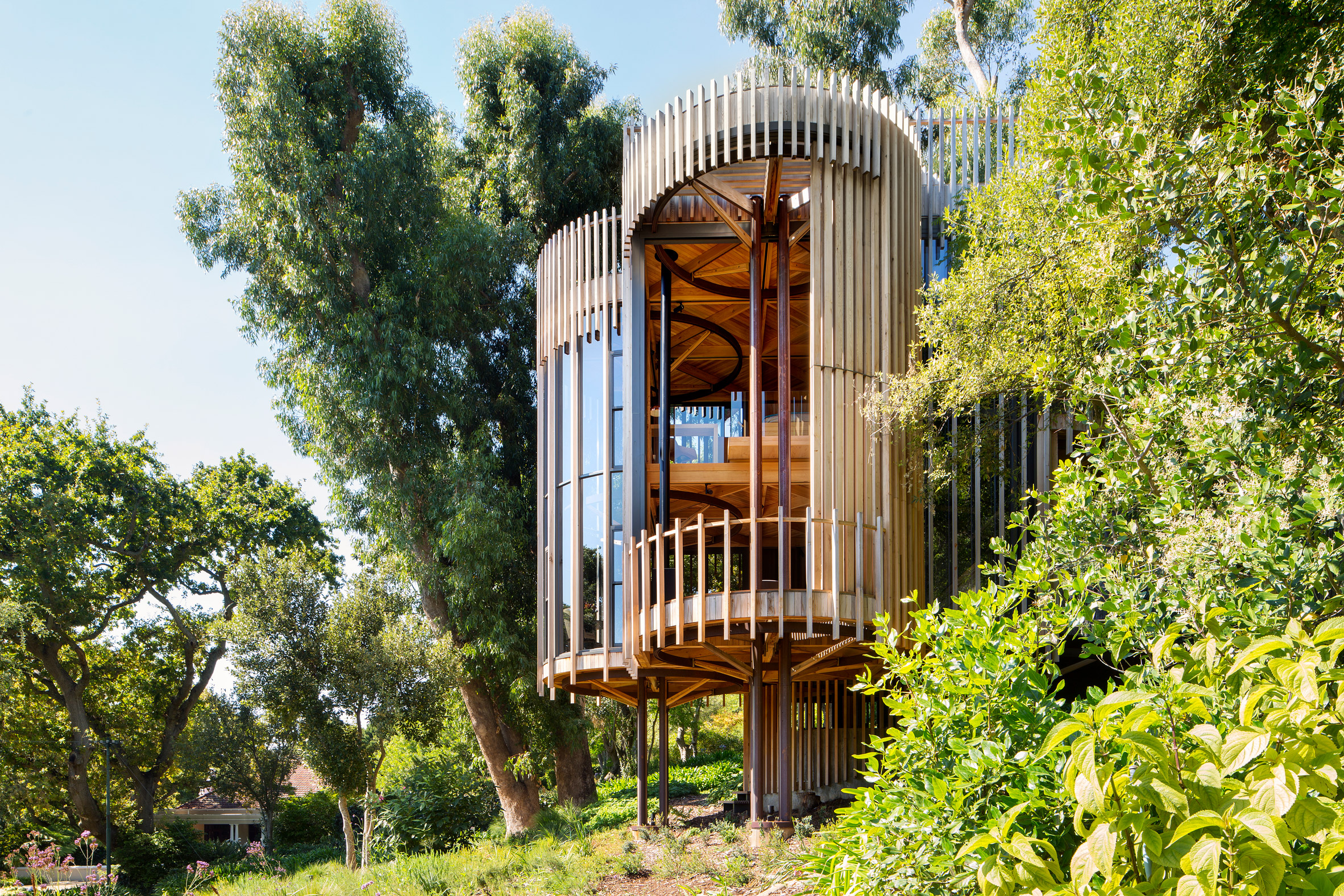 paarman-tree-house-by-mv-architecture-residential_dezeen_2364_col_10.jpg