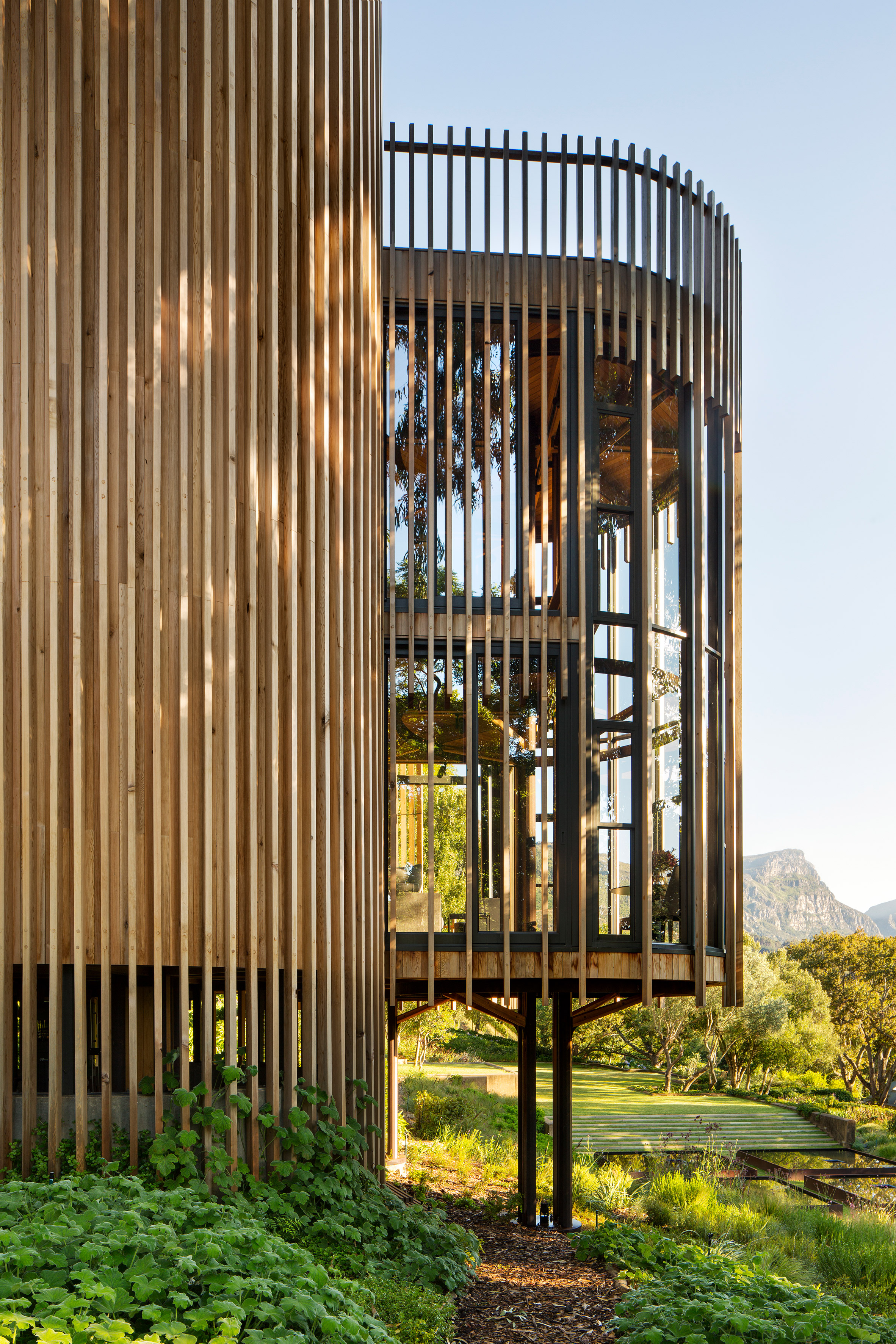 paarman-tree-house-by-mv-architecture-residential_dezeen_2364_col_13.jpg