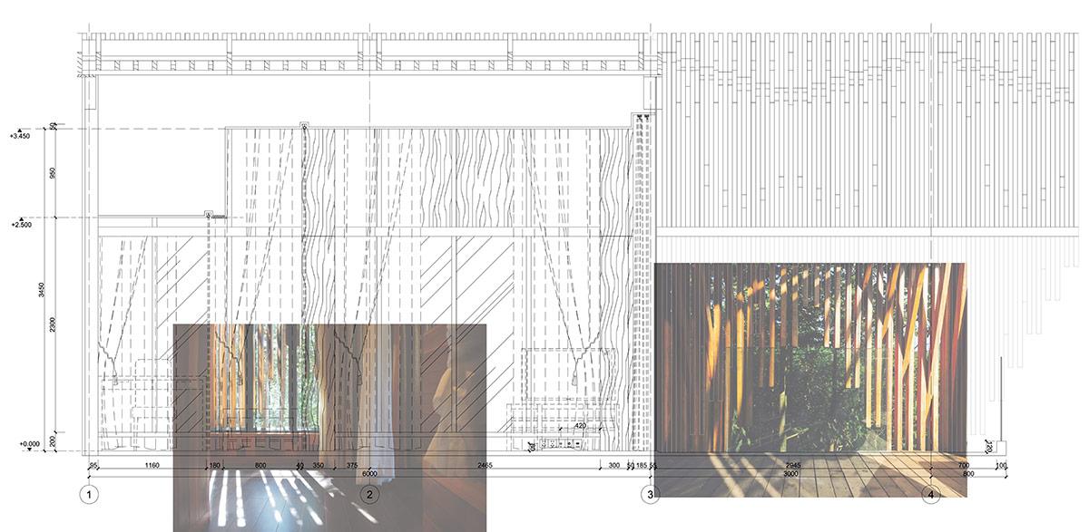 treehousem_landstudio_db_17.jpg